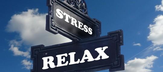 Estrés y grasa