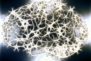Neuroplasticidad; cambia tu vida