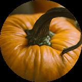 ¿Por qué nos gusta más celebrar Halloween que la festividad de Todos los Santos?